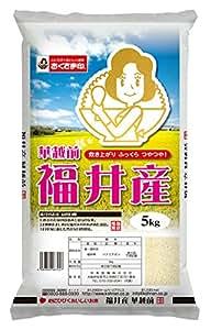 【精米】福井県産 白米 ハナエチゼン 5kg 29年産米