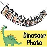 恐竜 写真バナー ブラック