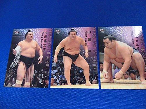 大相撲カード ①鶴竜 ②日馬富士 ③白鵬 の3枚セットです。