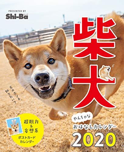 2020カレンダー 柴犬やんちゃな おはなしカレンダー ([カレンダー])