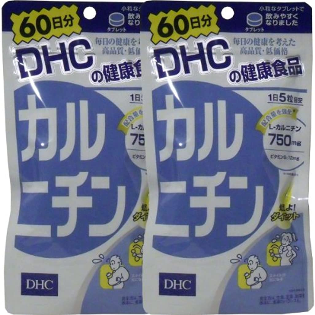 罪ピッチャー日付付きDHC カルニチン 300粒 60日分 ×2個セット