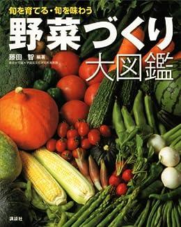[藤田智]の野菜づくり大図鑑 (エディトリアル 一般実用)