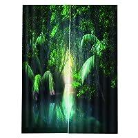 PETSOLA 遮光カーテン 装飾カーテン 写真背景布 3Dデジタル 防水 防カビ リビングルーム用 全3サイズ - 170x200cm