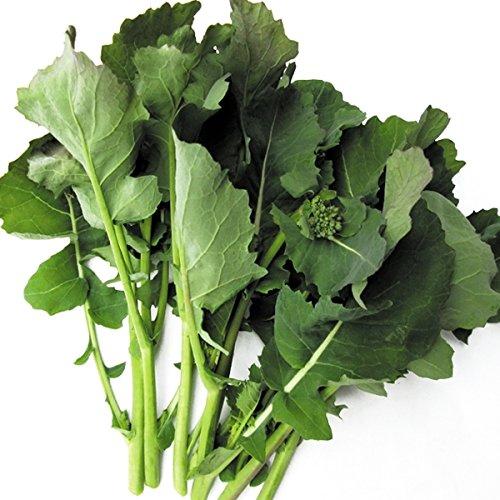 【メール便配送】国華園 野菜たね 葉菜類 のらぼう菜 1袋(5ml)【※発送が国華園からの場合のみ正規品です】