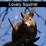 Lovely Squirrel 2019: Squirrels in the forest and in the park (Calvendo Animals)