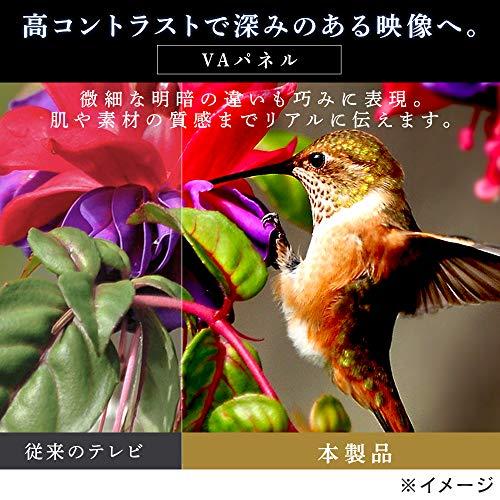 https://images-fe.ssl-images-amazon.com/images/I/51CjdDpT%2BlL.jpg