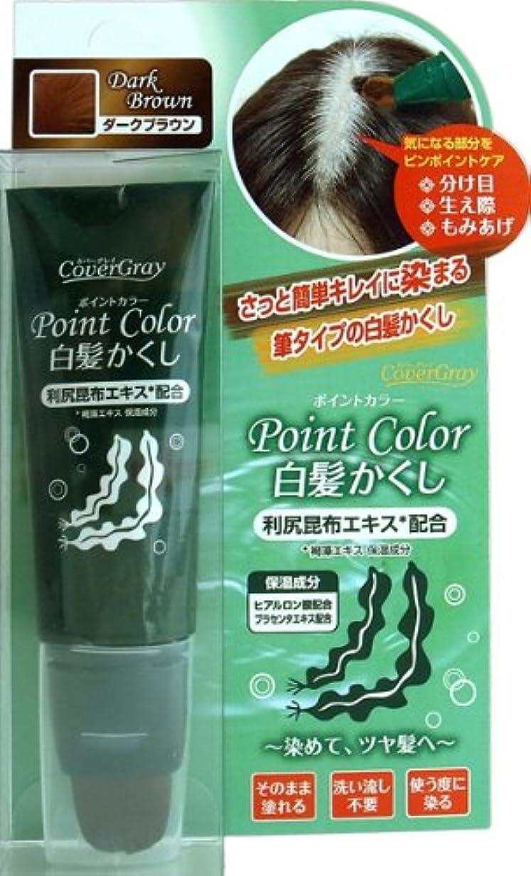 パレードストライプバーガーダイム カバーグレイ ポイントカラー 白髪かくし ダークブラウン 30g
