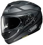 ショウエイ(SHOEI) バイクヘルメット フルフェイス GT-AIR SWAYER (スウェイヤー) TC-5 SILVER/BLACK M (頭囲 57cm)