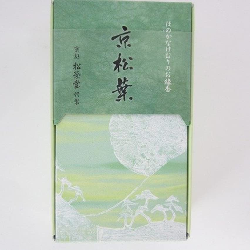 卒業重要なコンピューターゲームをプレイする松栄堂 玉響シリーズ お香 京松葉 45g