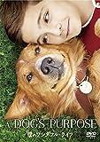 僕のワンダフル・ライフ/A DOG'S PURPOSE