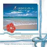 美ら浜辺のコンサート~波音とハーモニカ