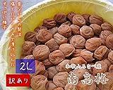 紀州健康梅 たる梅【訳あり】 [ちょい切れ つぶれ梅] 2017年度産 10kg 塩分約20% 農家直送 (2L)