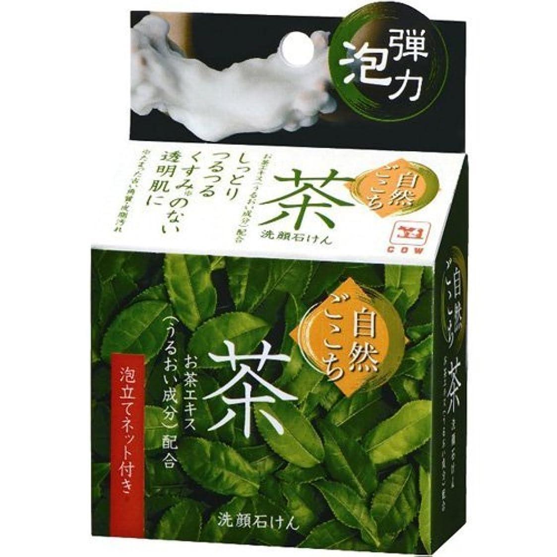 サドル疼痛侵入する自然ごこち 茶 洗顔石けん 80g x 5個セット