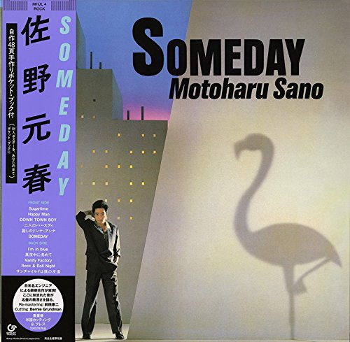 SOMEDAY(完全生産限定盤) [Analog]の詳細を見る