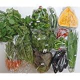 【産地直送】自然栽培 元氣野菜セットL(農薬・肥料不使用/約7~10品目)