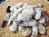 かき 広島県産最大級2Lサイズ1kg 牡蠣 カキ かき