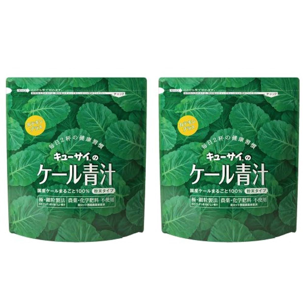 レキシコン高原狭いキューサイ青汁カテキンプラス420g(粉末タイプ)2袋まとめ買い【1袋420g(約1カ月分)】