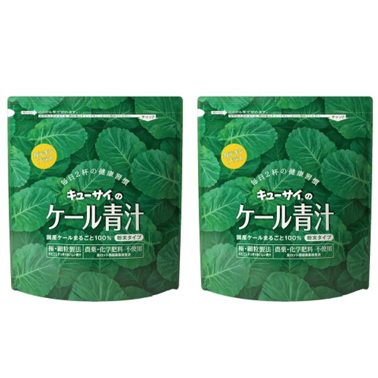 会話チャペル洗剤キューサイ青汁カテキンプラス420g(粉末タイプ)2袋まとめ買い【1袋420g(約1カ月分)】