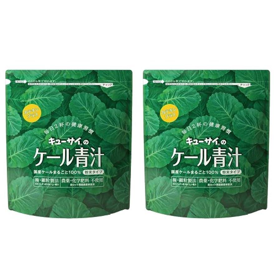 幸福土器ビンキューサイ青汁カテキンプラス420g(粉末タイプ)2袋まとめ買い【1袋420g(約1カ月分)】