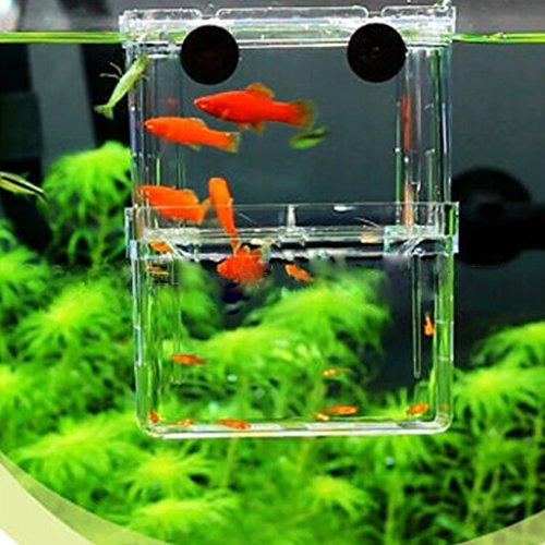 EFORCAR 1PCS 多機能 魚 繁殖隔離ボックス 金魚 水槽 孵化 産卵箱 水族館アクセサリー (S)