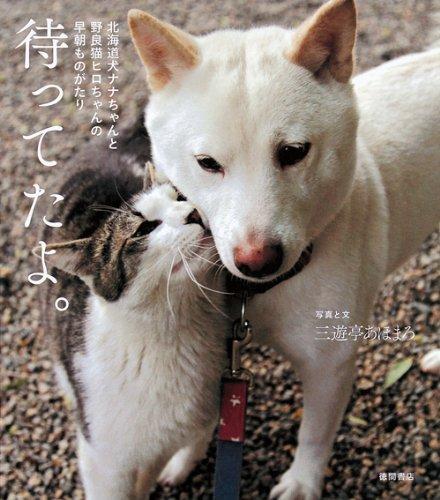 北海道犬ナナちゃんと野良猫ヒロちゃんの早朝ものがたり 待ってたよ。の詳細を見る