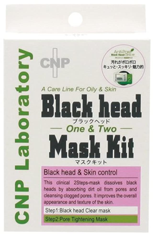貫通する発表キュービックブラックヘッド マスクキット