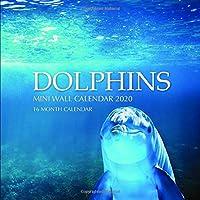 Dolphins 7 x 7 Mini Wall Calendar 2020: 16 Month Calendar
