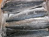 サゴシ(サワラ)フィーレ 4kg/20枚