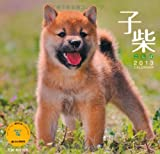 子柴 卓上カレンダー (ヤマケイカレンダー2013 Yama-Kei Calendar 2013)