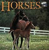 Horses (Reading Railroad)