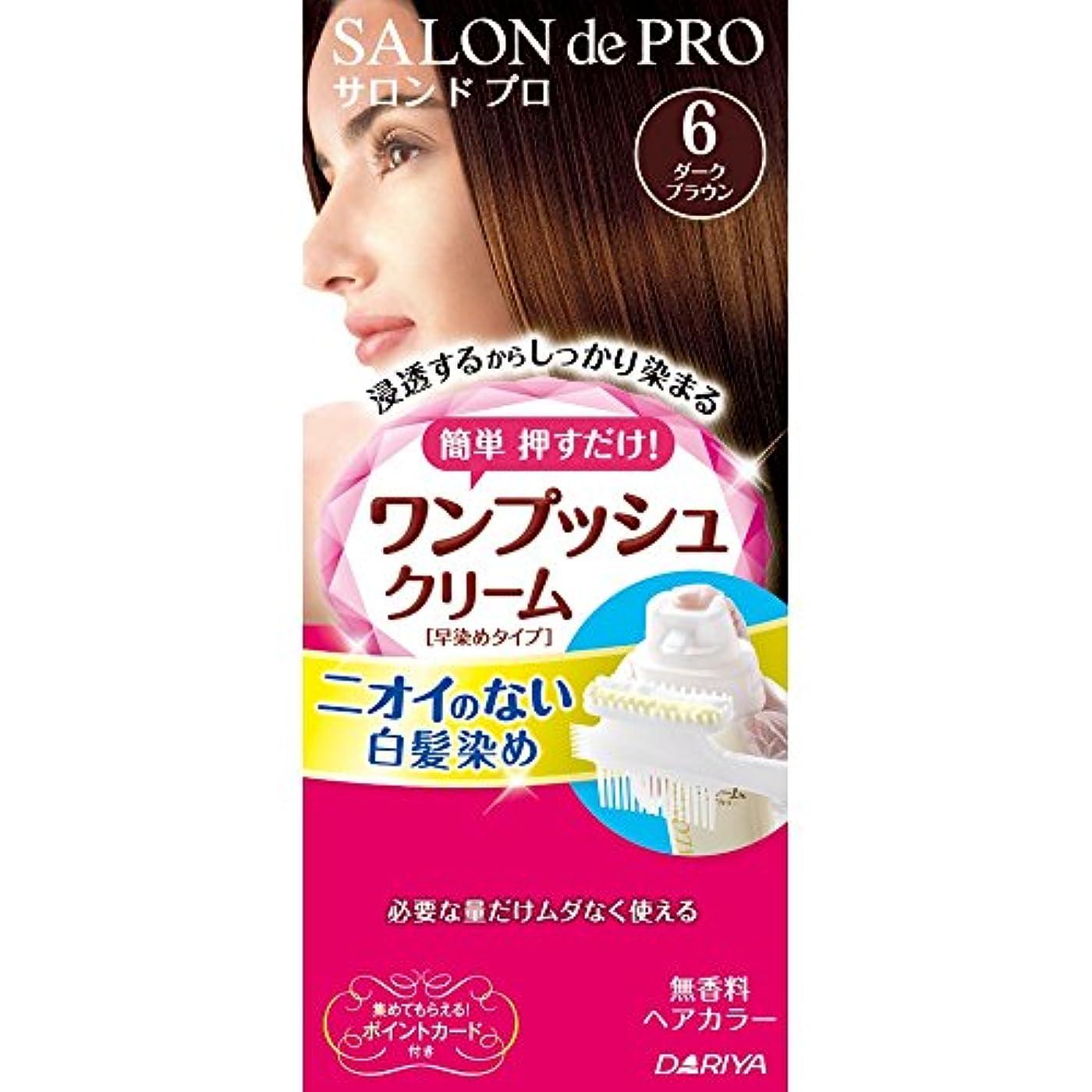 厚い蓋変色するサロンドプロ ワンプッシュクリームヘアカラー 6 40g+40g