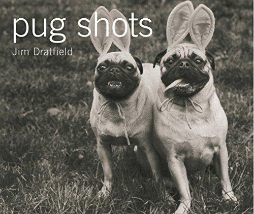 Pug Shotsの詳細を見る