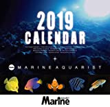 マリンアクアリスト 海水魚カレンダー 2019年カレンダー