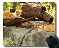 賭博のマウスパッド、動物の写真撮影の猫のマウスパッド、コンピュータcat261のためのマウスのマット