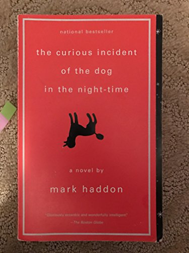 the curious incident of the dog in the night time 3 essay