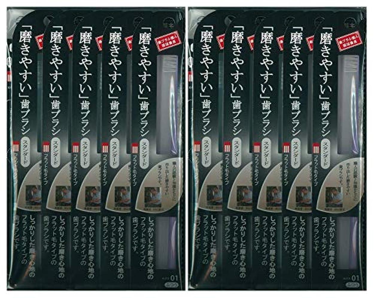 欠伸ハリケーン小川歯ブラシ職人 田辺重吉考案 磨きやすい歯ブラシ ふつう (フラット) LT-01 1本入×24本セット