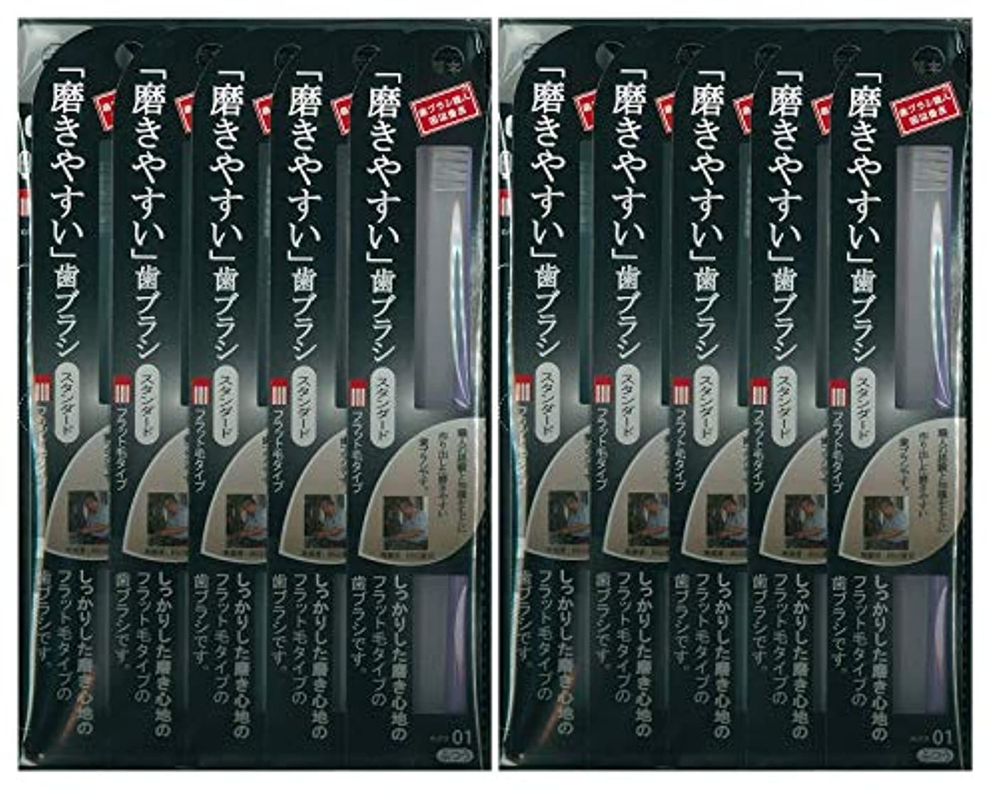 チチカカ湖楕円形かろうじて歯ブラシ職人 田辺重吉考案 磨きやすい歯ブラシ ふつう (フラット) LT-01 1本入×24本セット