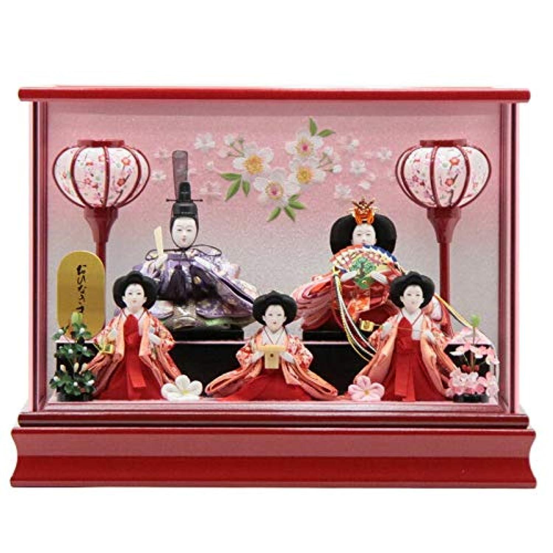 雛人形 ケース入り五人飾り[幅43cm][it-1017] 雛祭り