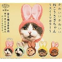 Kitan Club (キタンクラブ) キャットヘッドギア 10thエディション 可愛い猫 ウサギ チャンプライズ 全5セットミニ