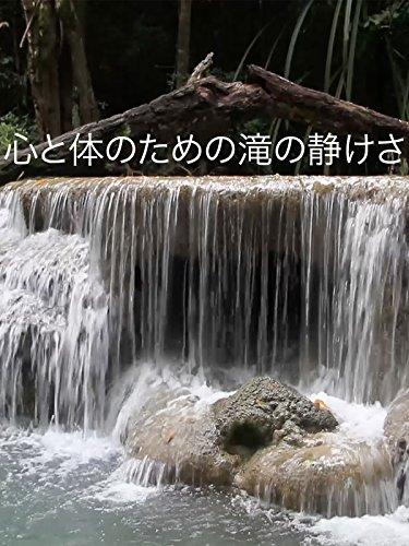 心と体のための滝の静けさ