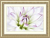 アートフレーム印刷' Dahlia ' by Dawn LeBlanc Size: 47 x 35 (Approx), Matted ホワイト 3764333