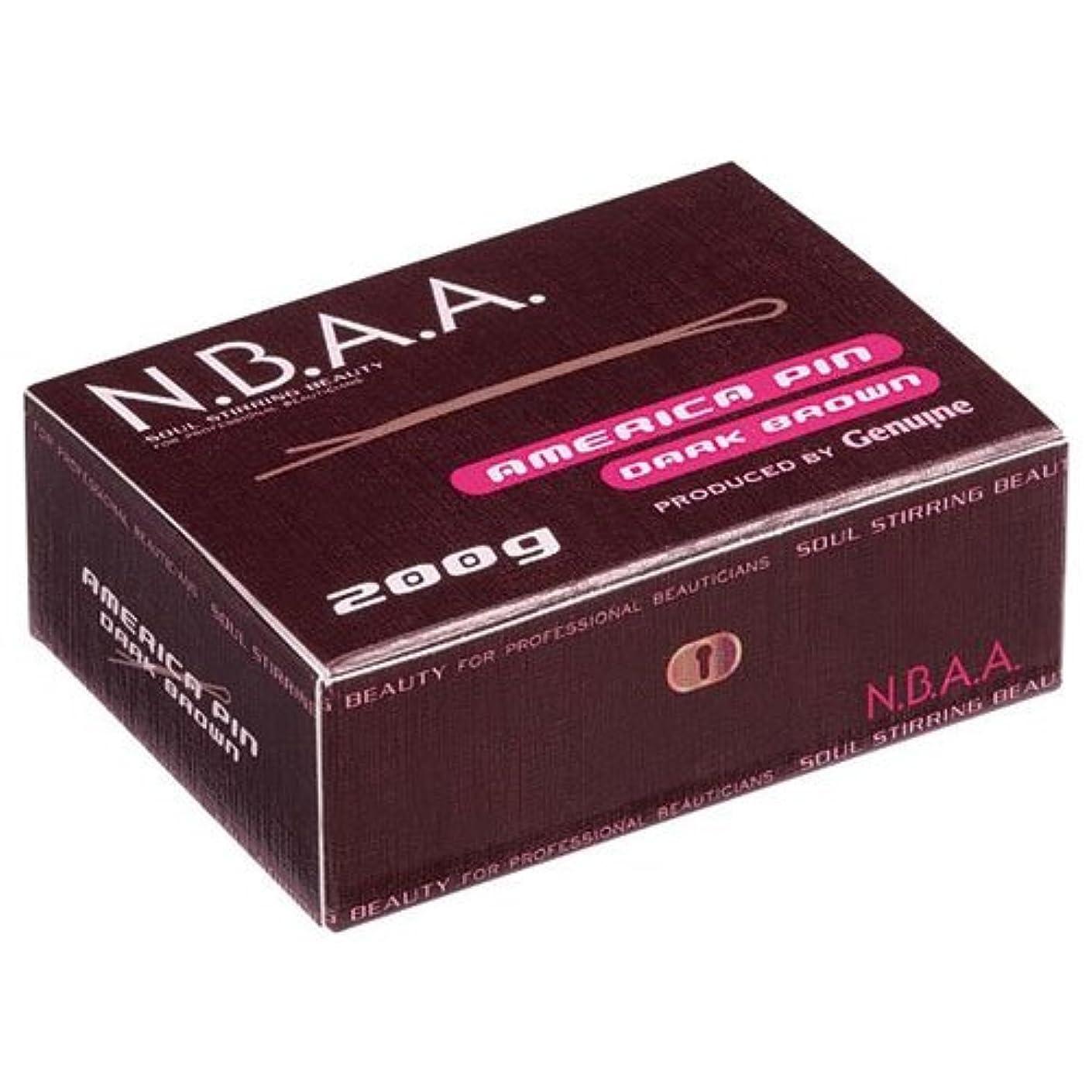 亡命わずかに反映するNB-P01 NBAA.アメリカピン 200g