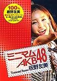 ミニマム AKB48 板野友美