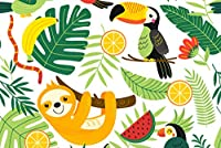A1 |かわいいナマケモノオオハシポスターアートプリント60×90センチメートル180gsmジャングルキッズギフト#8839