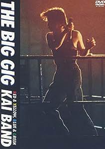 THE BIG GIG [DVD]