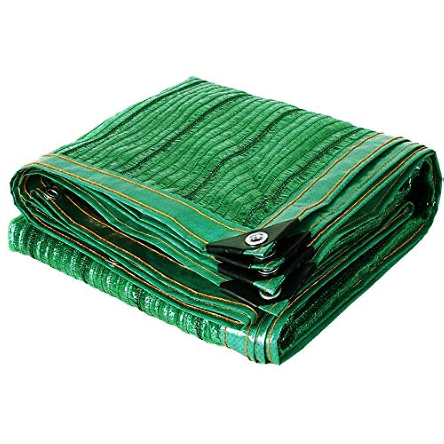 束ヤギ早いSHIJINHAO オーニングシェード遮光ネット メッシュ生地 工場 影 保護 帆 老化防止 ラップエッジ 引き裂き抵抗 ポリエステル、23サイズ (Color : Green, Size : 6x6m)