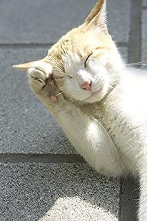 リアル招き猫カレンダー2018