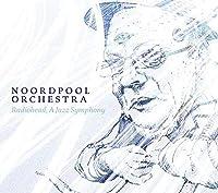 Radiohead: A Jazz Symphony by Noordpool Orchestra (2013-03-12)