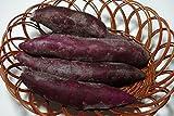 福岡産むらさきいも(紫芋)スイーツ、サラダ、パン作り。アントシアニン豊富 約500g