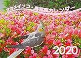 【Amazon.co.jp 限定】オカメインコ鳥写真カレンダー2020 (B6サイズ。ワンタッチで卓上にも壁掛けにもなる3Wayカレンダー)